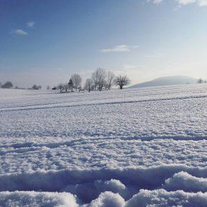 Stunning beautyofnature inlowewithswitzerland nature natur snow winterwonderland eshetgschneit schneelandschaft landscapehellip